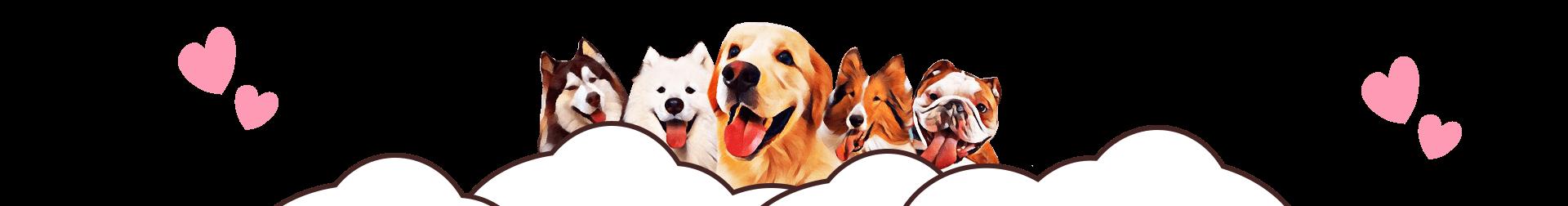 """Dmallovo钻戒活动-""""我的犬系男友"""""""